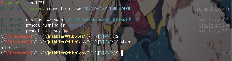 20210410-17:45:10-_QjCReC_R5Y7Yx